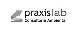 Praxis Lab SRL